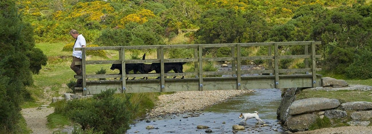 Devon-Country-Barns-Banner-001